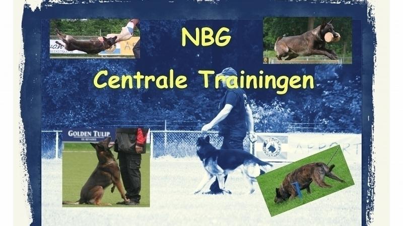 NBG Regionale trainingsdagen