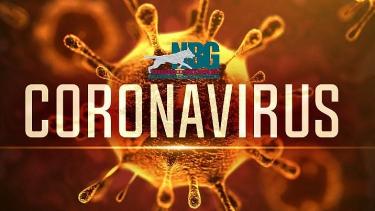 Afgelastingen ivm Coronavirus
