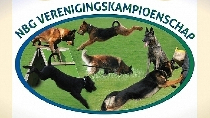 Loting en Tijdschema NBG Verenigingskampioenschap 2016